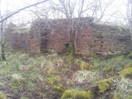 Cleghorn Brickworks, Cleghorn