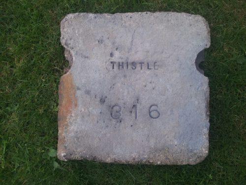 Thistle 316