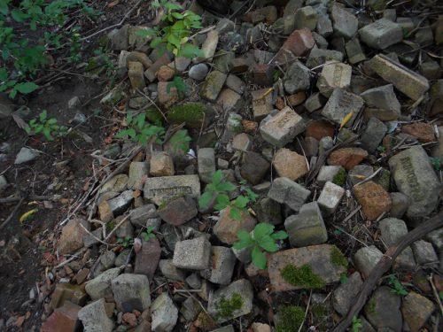 Caledonia scottish bricks canada......