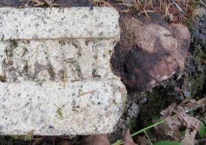 Gartcraig Victoria canada