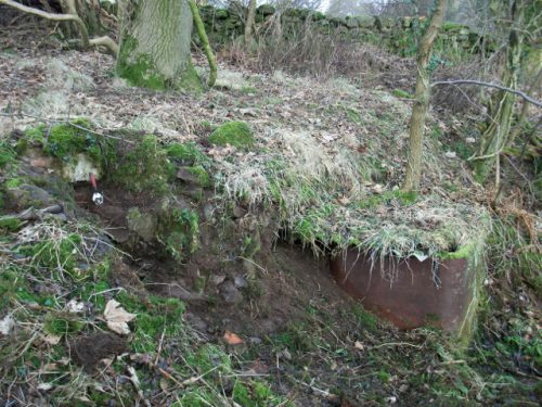 Youngs Heathfield cistern (640x480)