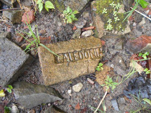 scottish bricks canada..