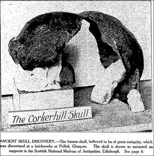 the-corkerhill-skull