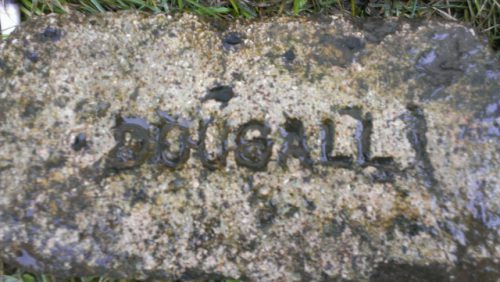dougall-640x361